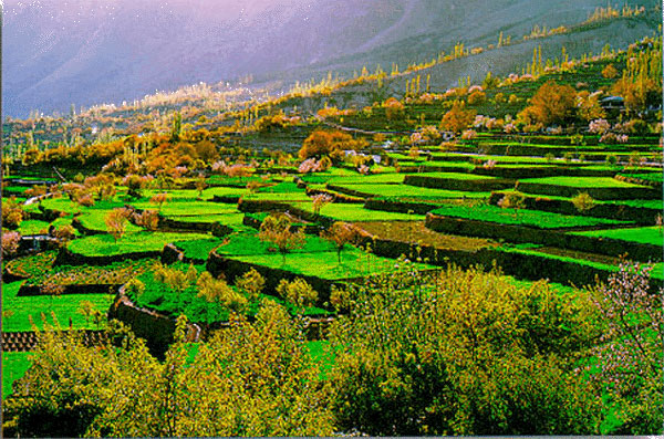 Hunza Panoramic Tours