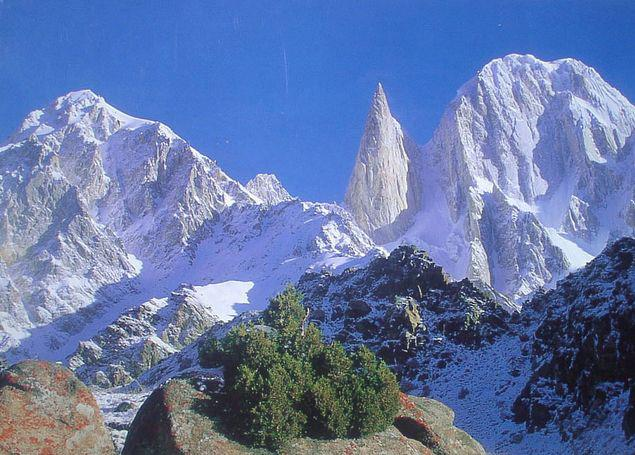 LADY FINGER (7,788 M)